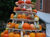 Large Pumpkin Display